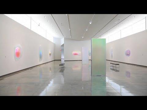 GISELA COLON : DAUM MUSEUM OF CONTEMPORARY ART : 2018