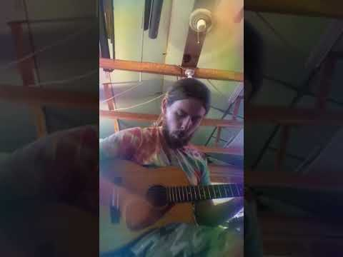 The Apples in Stereo - Sundal Song (cover)