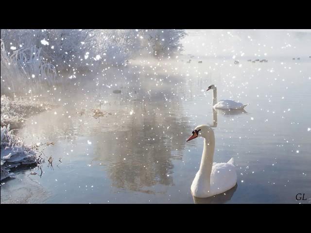 Смотреть видео Зима
