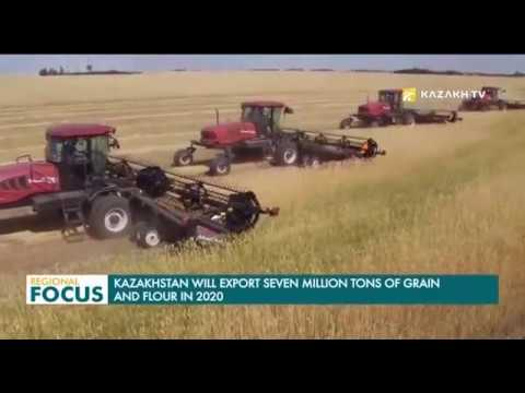 Kazakhstan to Export 7 Million Tons of Grain and Flour in 20