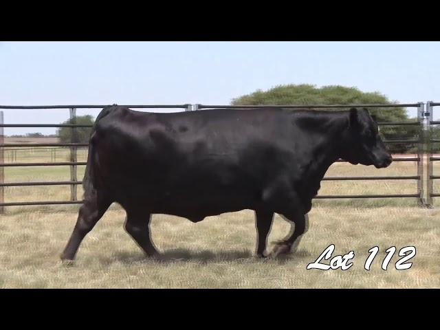 Pollard Farms Lot 112
