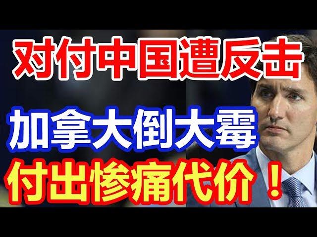 对付中国遭反击,加拿大倒大霉,付出惨痛代价!