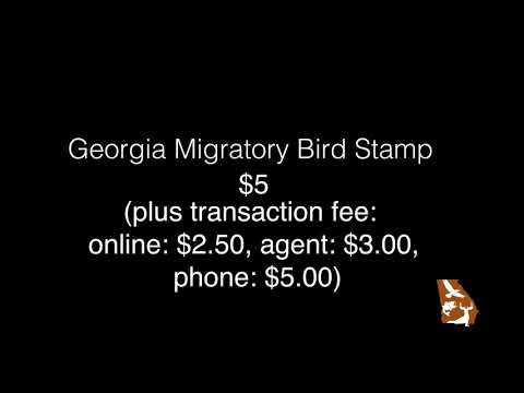 Georgia Migratory Bird Stamp