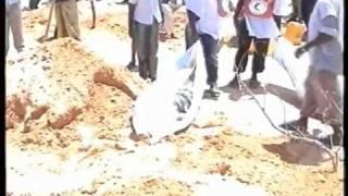Ethiopia iyo xulufadooda sida ay rabaan  (sh. Boqolsoon)