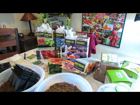 Vegetable Garden Tour & Tips 2/22/18: Herb Progress, Pepper Germination, Growing Greens, Acclimation