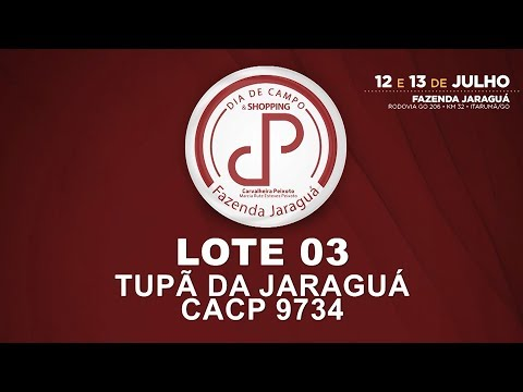 LOTE 03 (CACP 9734)