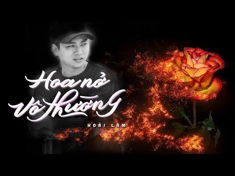 Hoa Nở Vô Thường | Hoài Lâm | Acoustic Version