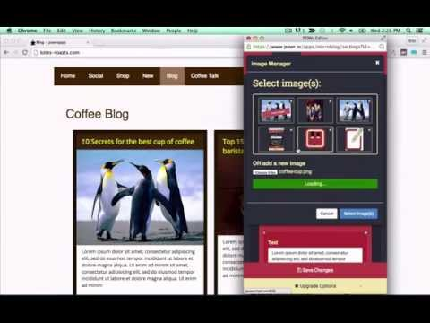 How to add microblog to Wordpress