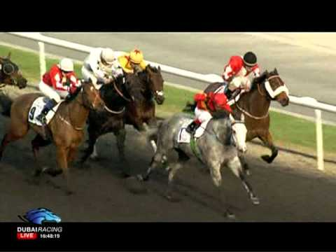 20.01.2012 Meydan (Dubai UAE) 4.Race Al Naboodah Construction Group - Conditions Race 1.200 m