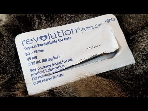 The Best Flea Medicine Ever, Revolution/StrongHold