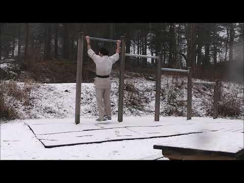 training motivation (karate)