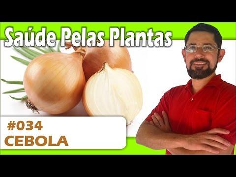 Saúde Pelas Plantas - Cebola [trombose, arteriosclerose, colesterol, diabetes, gripe, bronquite]