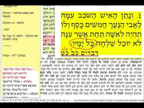 הדף היומי מסכת תמורה דף ה Daf yomi Temurah daf 5