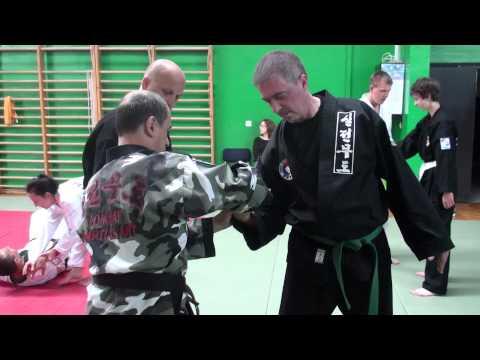 Hapkido seminar by Master Peter Sanders in Zagreb, Croatia