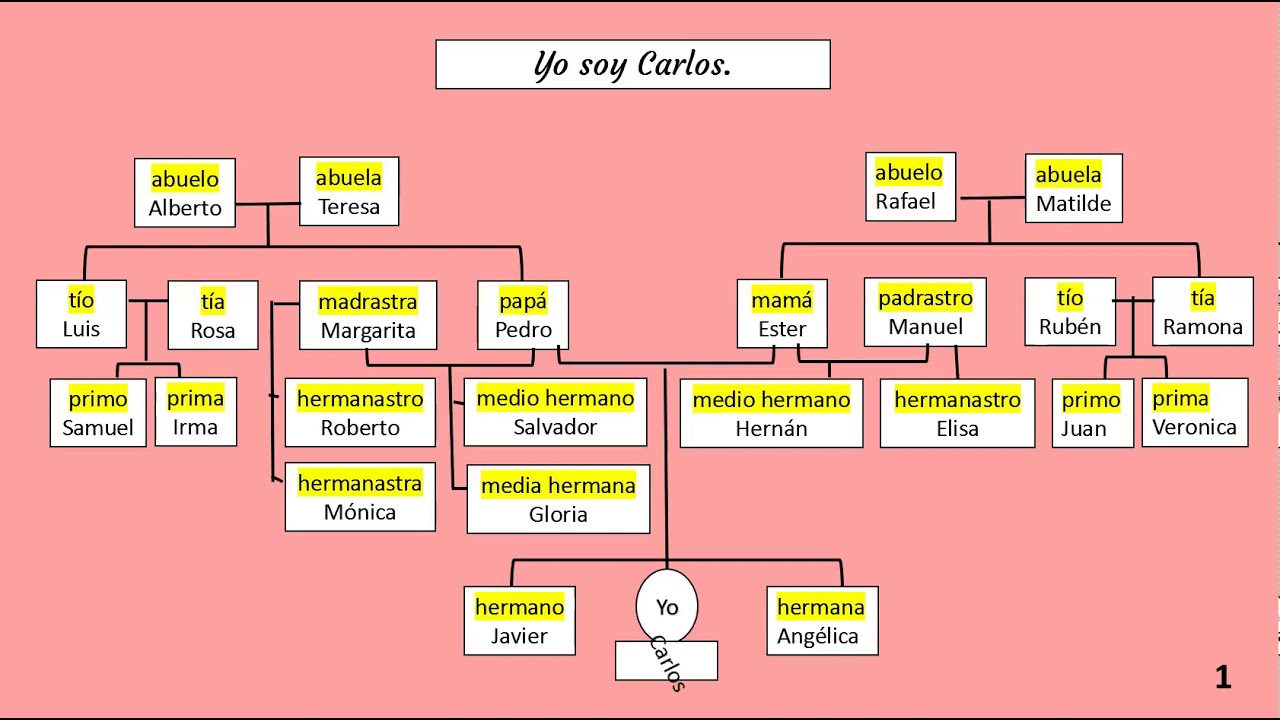 The family in Spanish, how to write sentences using ser and preposition de.