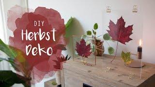 DIY Herbstdeko - Blätter in Glasscheiben