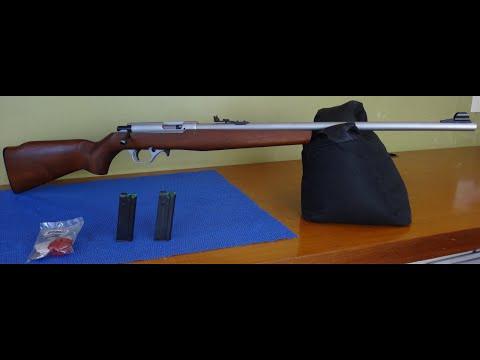 Revisão do rifle 8022 em 22 LR da CBC