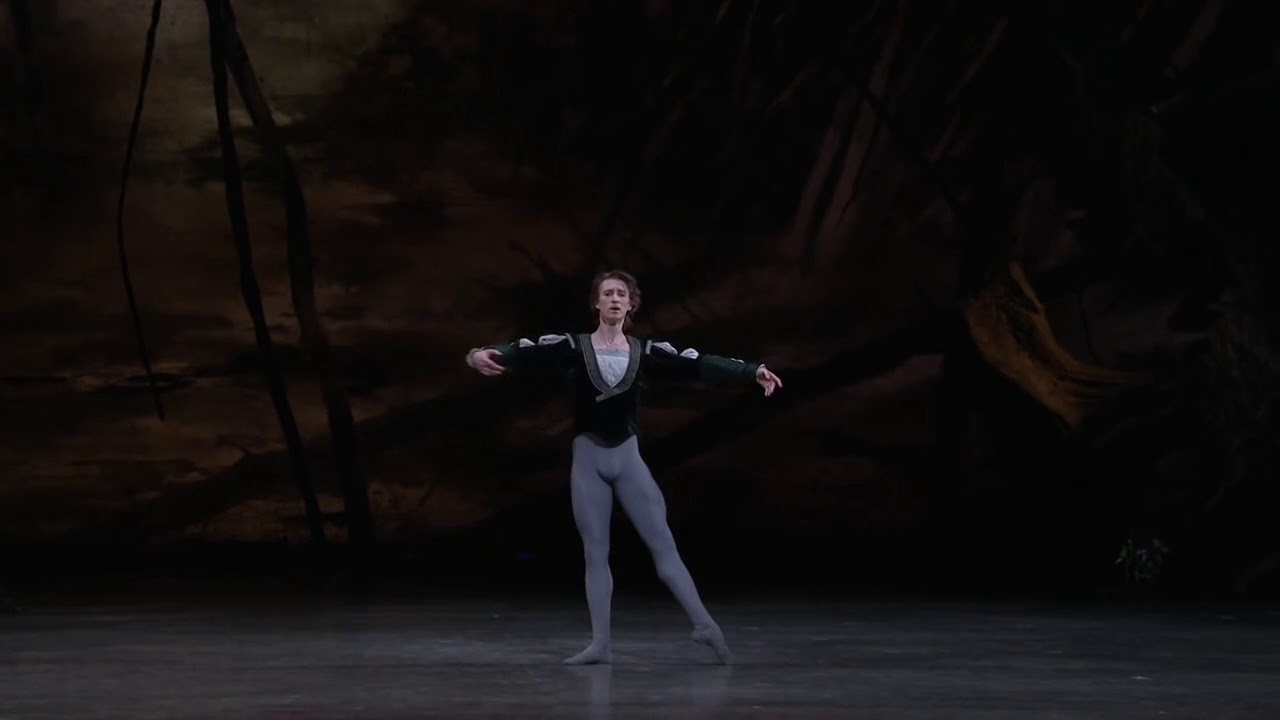 My Top 10 Favourite Male Ballet Dancers