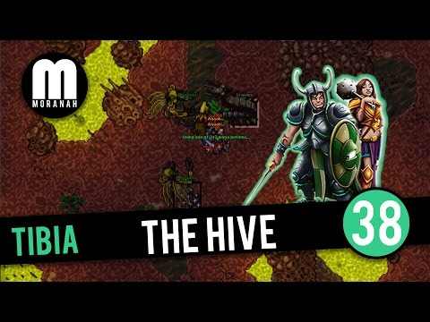 Tibia - #38 - Elite Knight Hunting The Hive