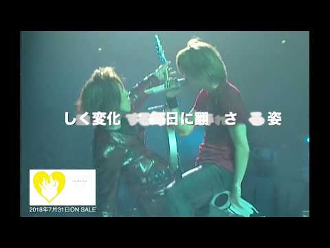 pure soul Anthology「pure soul Spin-off Movie〜HEAVY GAUGE前夜、4人の肖像〜」ダイジェスト