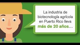 Puerto Rico: Paraíso para la biotecnología agrícola
