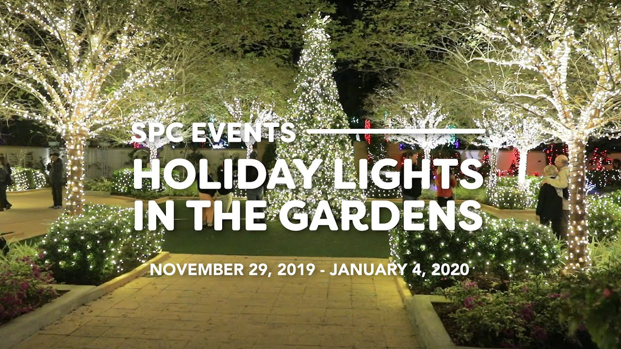 Largo Botanical Gardens Christmas Lights 2020 Holiday Lights in the Gardens | Visit St Petersburg Clearwater Florida