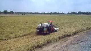 YANMAR | Harvest in Vietnam