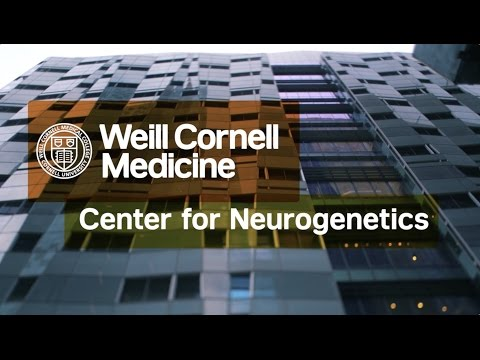 Center for Neurogenetics | Weill Cornell Medicine