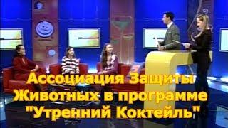 """Ассоциация Защиты Животных в программе """"Утренний Коктейль"""""""