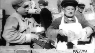 PKF 1946 36