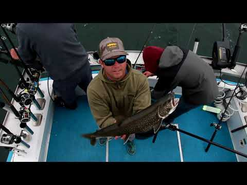 Lake Trout MANIA Duluth MN Happy Hooker IV Charter 2019