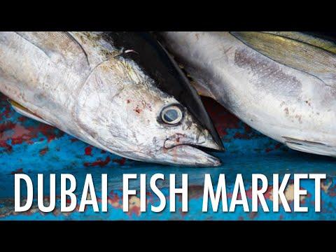 New Dubai Fish Market @ Waterfront Market - Discover Dubai