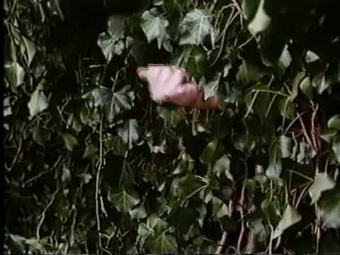 The Secret Garden Trailer 1993 Complete And Rare Youtube