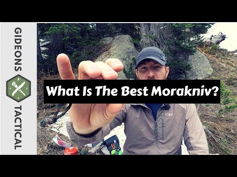 What Is The Best Morakniv?