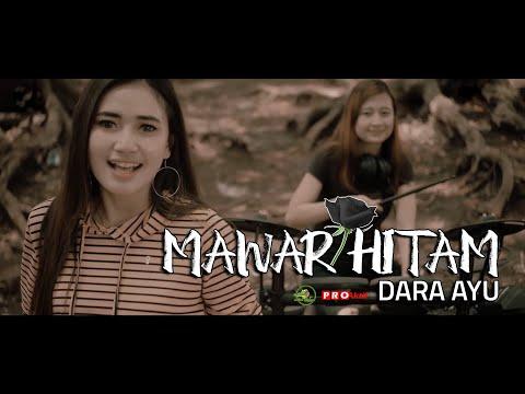 Dara Ayu Mawar Hitam  Official Reggae Version