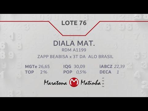 LOTE 76 Maratona Matinha