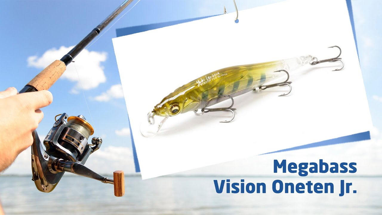 Once a closely guarded secret, the megabass vision 110 jerkbait has now become a staple among professional anglers and amateur fishermen alike. Packed with tournament-winning features, this slow-floating jerkbait drives game fish wild with its wide, erratic darting actions, realistic color patterns and a flash that calls.