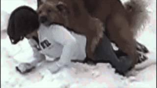 thatdog.gif