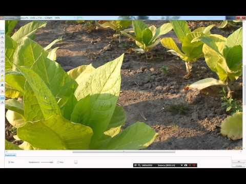 Легко и быстро добавляем надписи и водяные знаки с помощью бесплатной программы FastStone Image View