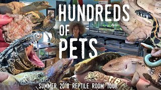 Reptile Room Tour Summer 2018 | HUNDREDS OF ANIMALS in ONE Room!