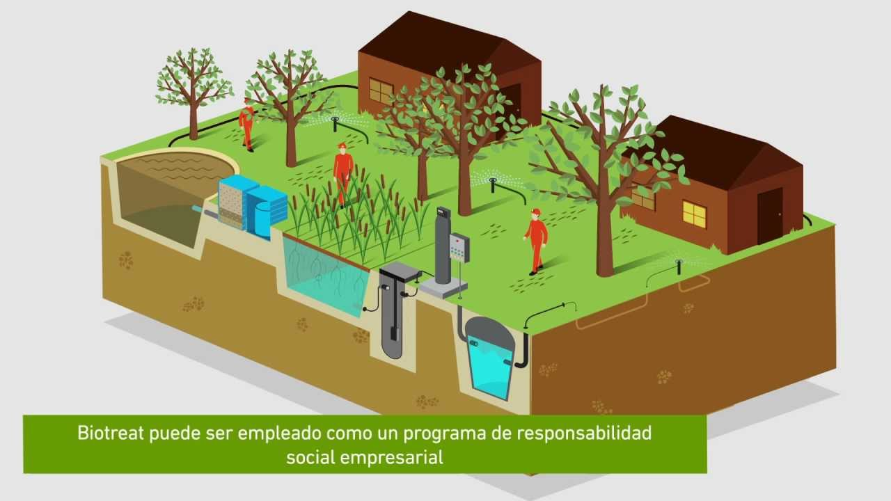 Biotreat filtros naturales para el tratamiento de aguas for Plasticos para estanques de agua