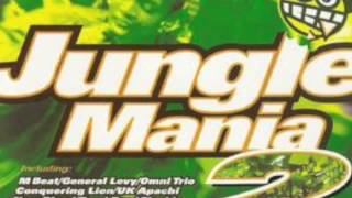 Jungle mania 2 cd 1