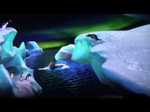 SeaWorld Antarctica: Empire of the Penguin POV - Sea World - Sea World Antarctica - HDR-CX430V