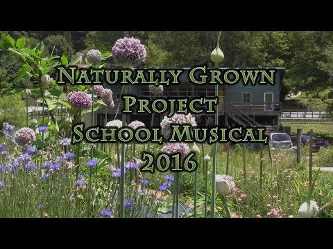 Naturally Grown Project School Musical 2016