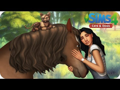 ANIMAL SHELTER | Sims 4 Cats And Dogs Letsplay | EP 8 - DOGGIE PLAY DATE