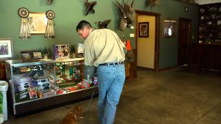 D.T. The Dog Training Video 4 | How to Teach a Dog to Sit, Heel, and Recall