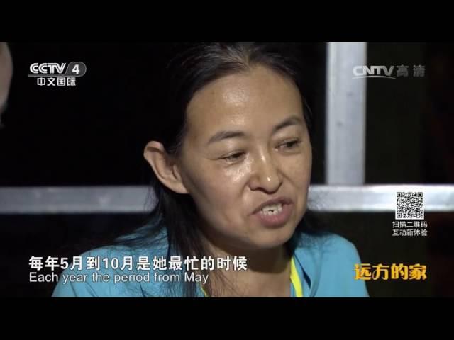 《长城内外》特别节目(4)长城:物华天宝五谷丰  【1080P】