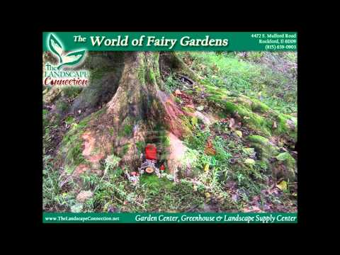 Fairy Gardening, Fairy Gardens, Building A Fairy Garden, How To Build A Fairy Garden