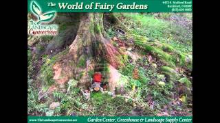 Fairy Gardening, Fairy Gardens, Building A Fairy Garden, How To Build A Fairy Garden