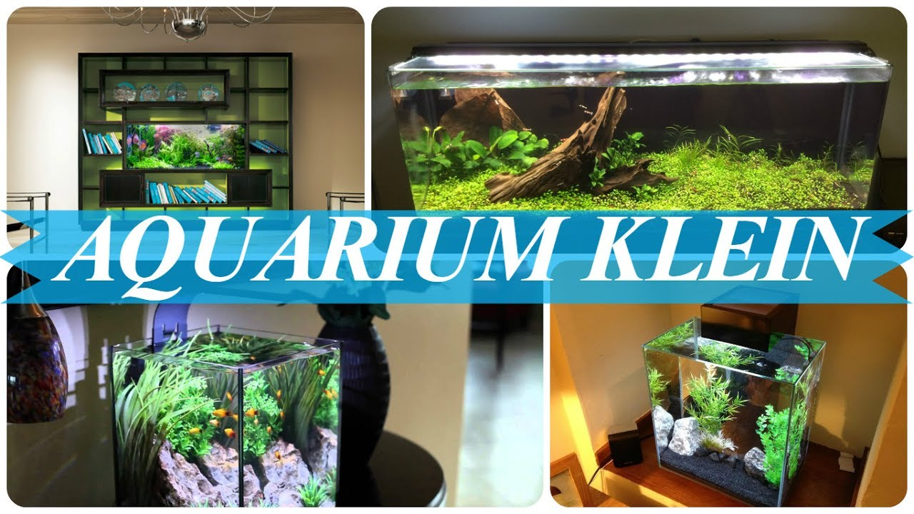 kleines aquarium einrichten youtube. Black Bedroom Furniture Sets. Home Design Ideas